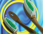 Ion Toothbrush (1 Handle + 6 Exchangeable Brush Head/Pack)